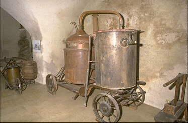 vino-grappa