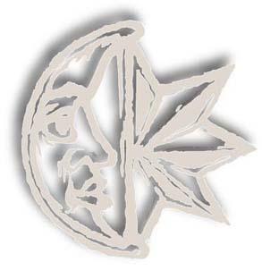 Logo mucgt